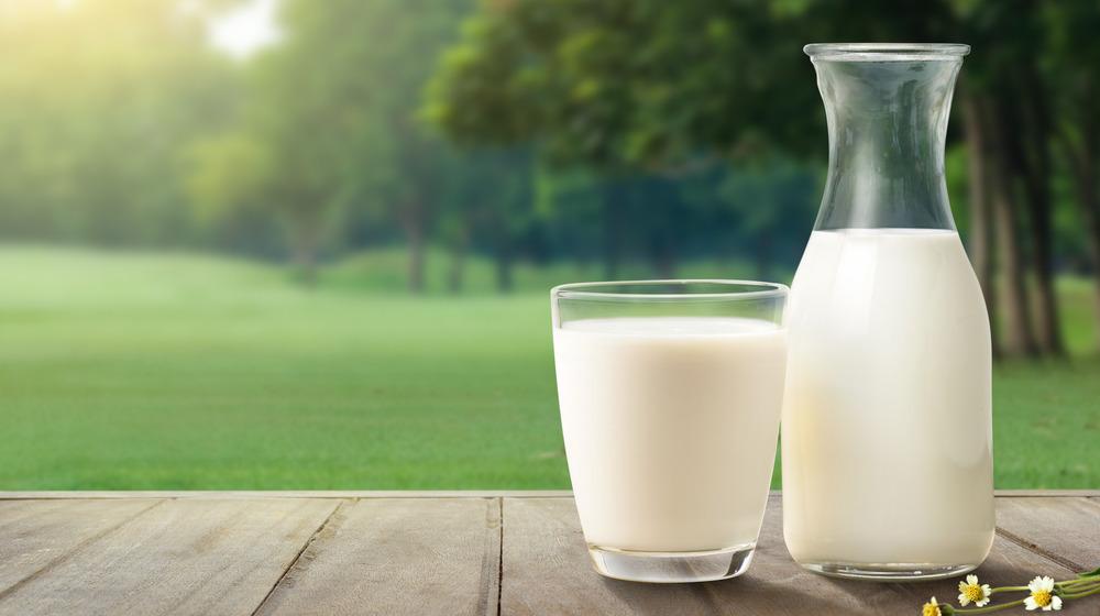 Milk jug in front of trees