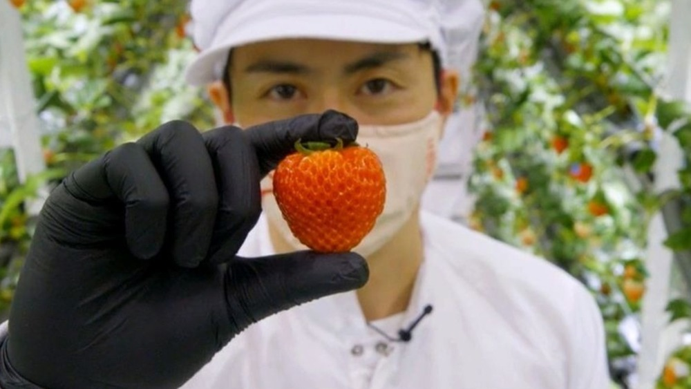 A man holding a strawberry