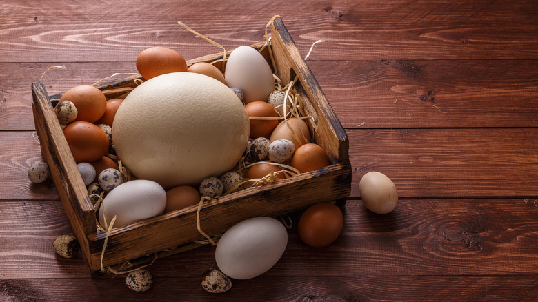 egg varieties in a wooden box
