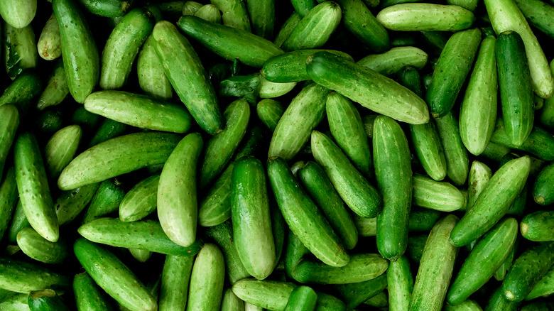 A pike of cucumbers