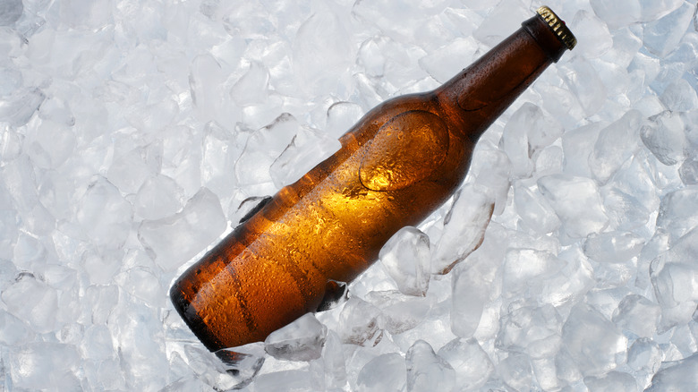 brown bottle on ice