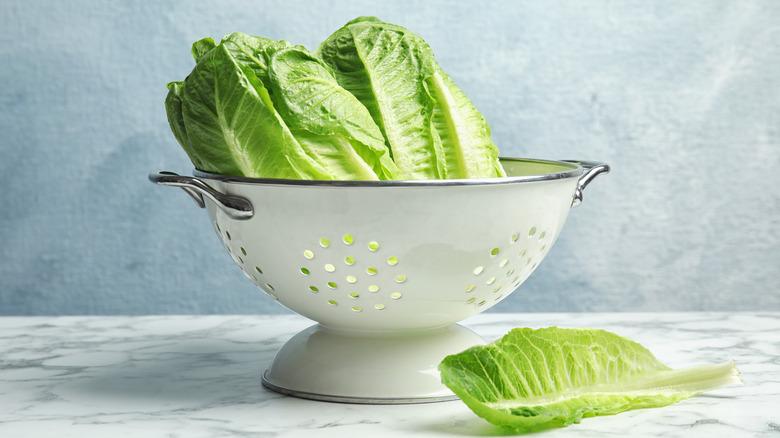 Colander with freshly washed lettuce