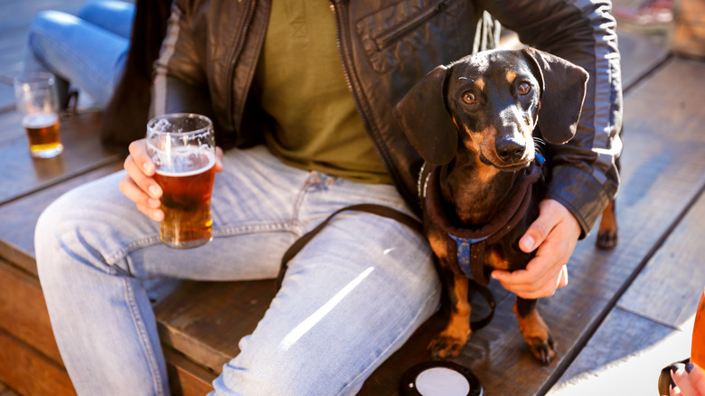 Man drinking beer with dog