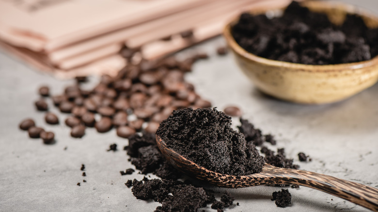Used coffee grounds in spoon