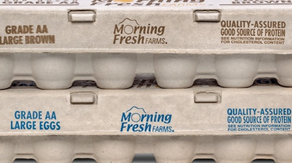 Eggs Sprouts Morning Fresh