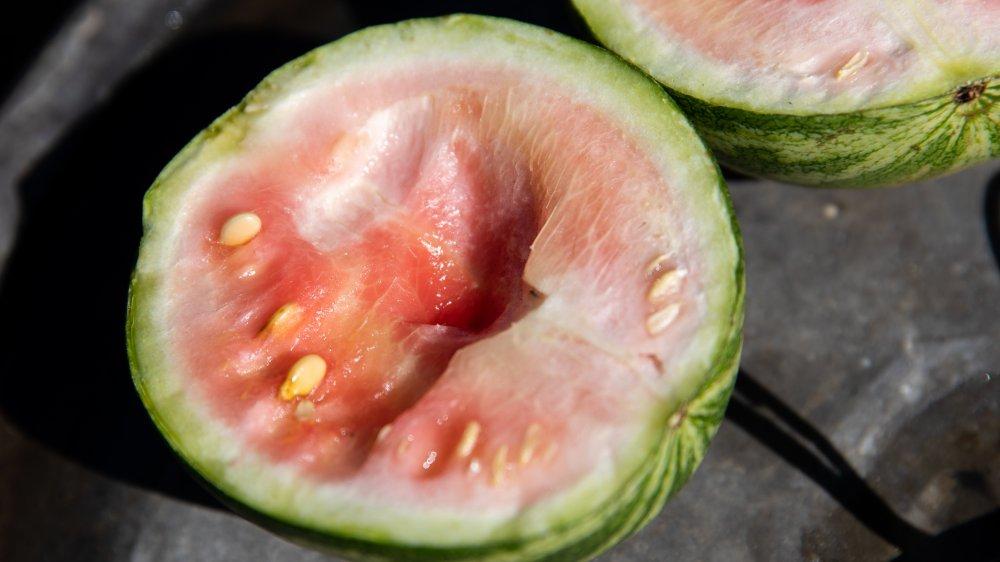 unripe watermelon cut in half
