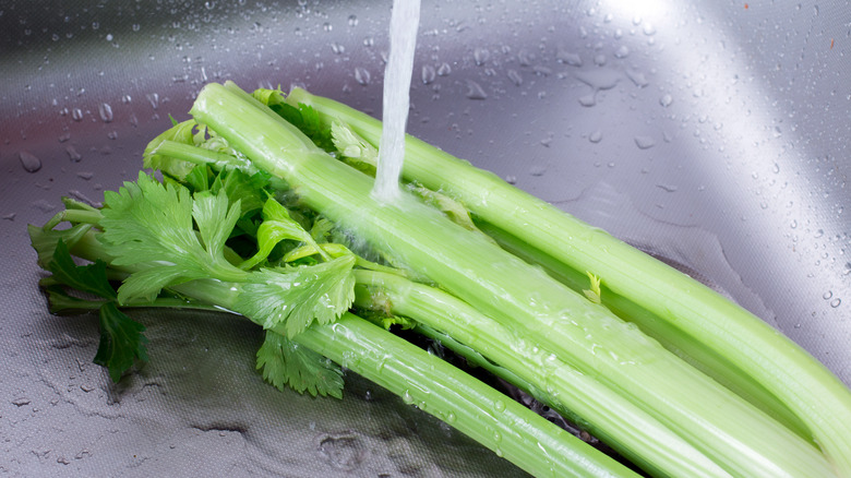 Washing celery in the sink