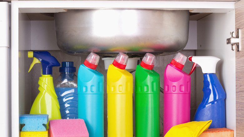 Cleaning products stored under kitchen sink