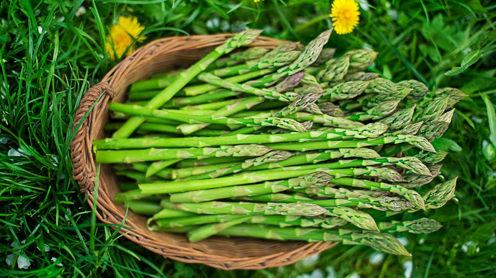Asparagus in a basket on the grass