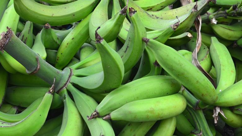 Green plantains