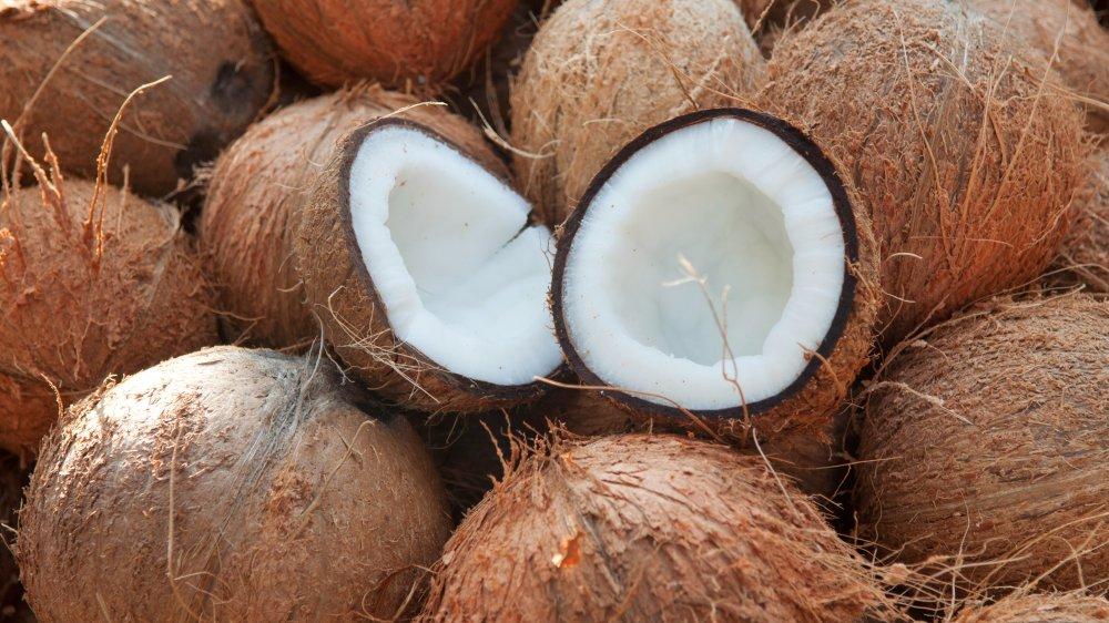 fresh coconut in shell