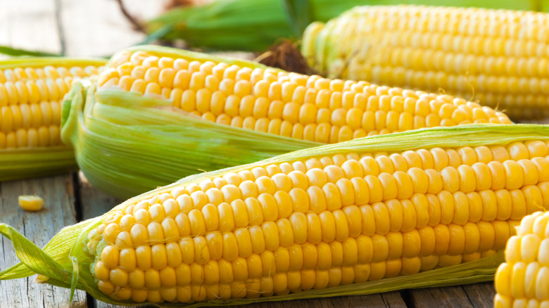 knife and cobs of corn