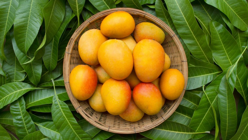 wooden bowl of mangos against green leaves