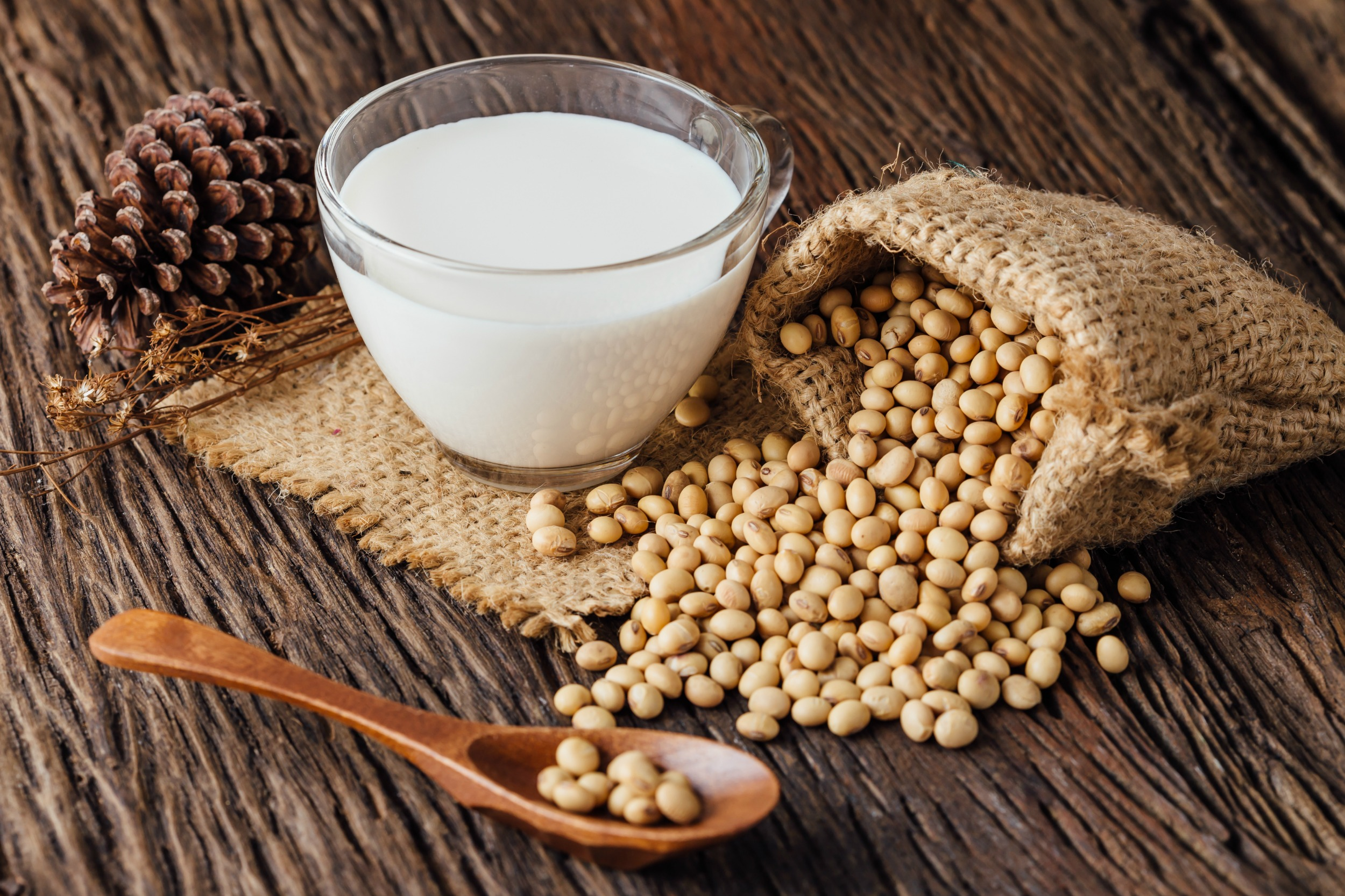 Everything You Need To Know About Soy Milk